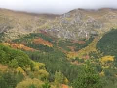 L'immagine può contenere: montagna, cielo, pianta, albero, spazio all'aperto e natura